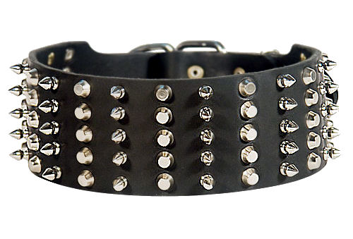 Spiked and Studded German Shepherd Collar
