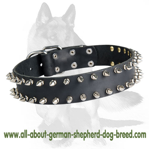 2 Row Spiked Collar for German Shepherd