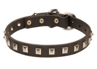 Studded Leather Collar for German Shepherd