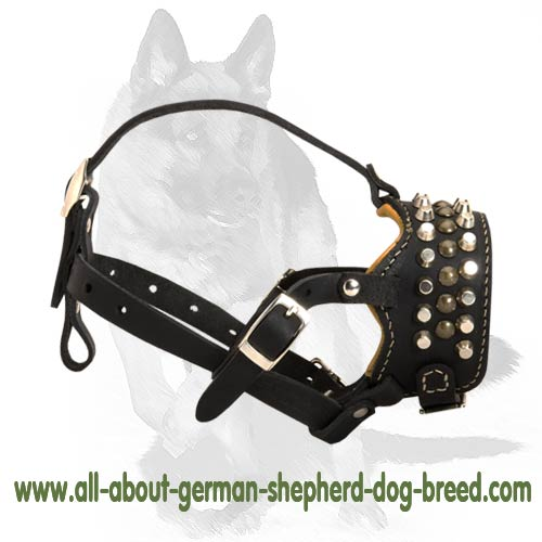 'Captain Infinix' - Padded Leather Dog Muzzle with Handset Studs