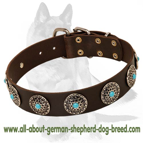 Western Leather Dog Collar w/h turquoise stones for Shepherd
