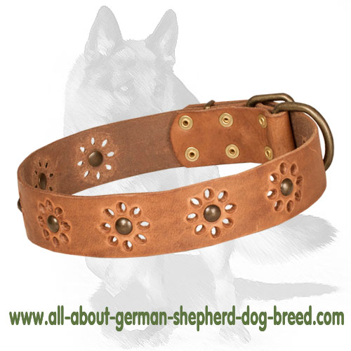 German Shepherd Nice Tan Leather Dog Collar with Flowers for Spring Mood