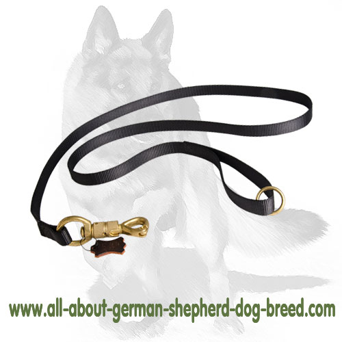 dog training leash