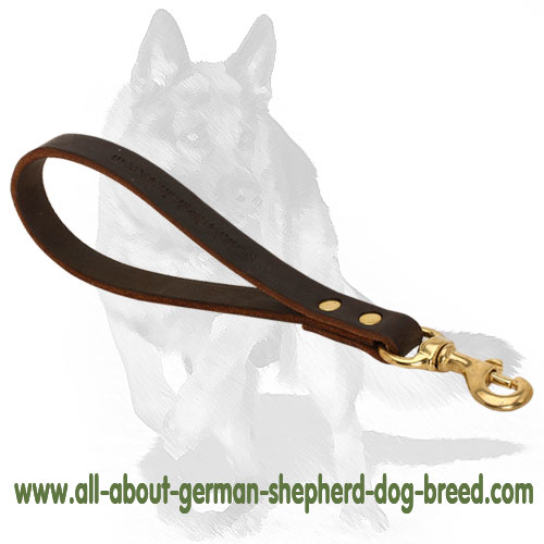 Reliable leather dog leash with sturdy hardware