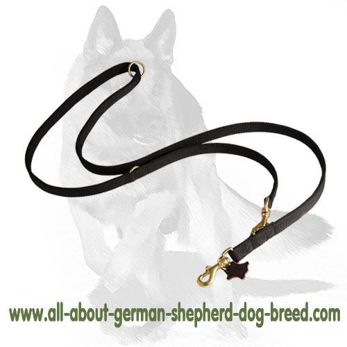 Durable nylon dog leash equipped with brass hardware