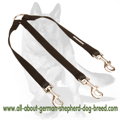 Extra strong nylon dog leash