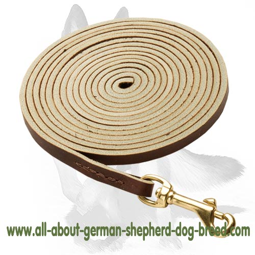 Long-lasting Leash made of Genuine Leather