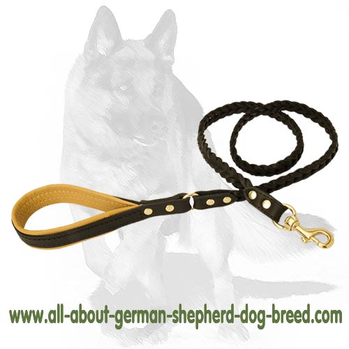 Robust Leash with Convenient Brass snap-hook