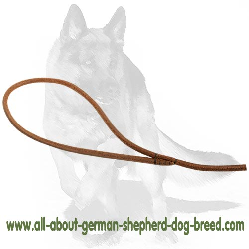 Best quality Leash of Leather