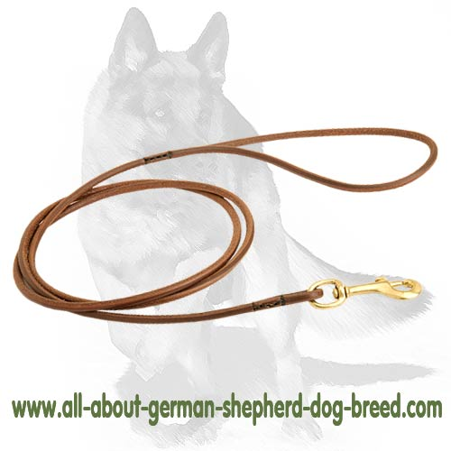 Thin Classic Leather Leash with Brass Hardware for Dog Show [L37