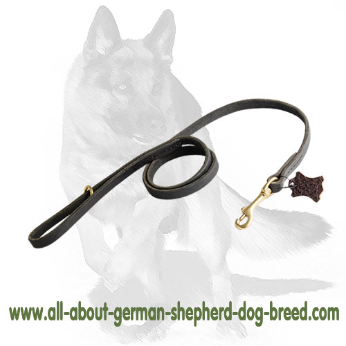 Comfortable leather dog leash
