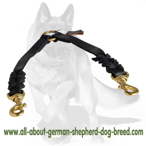 Leather dog leash equipped with durable hardware