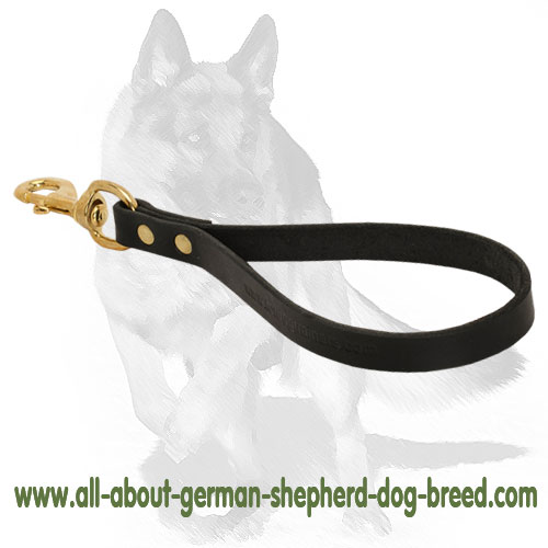 Leather dog leash equipped with sturdy hardware