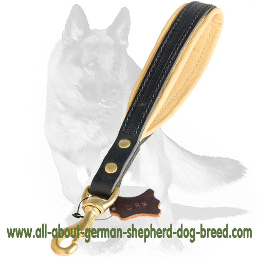 Adjustable leather dog leash