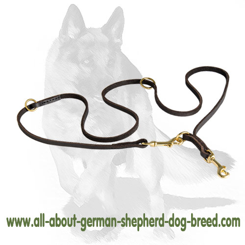 Universal leather dog leash with snap hook and O-ring