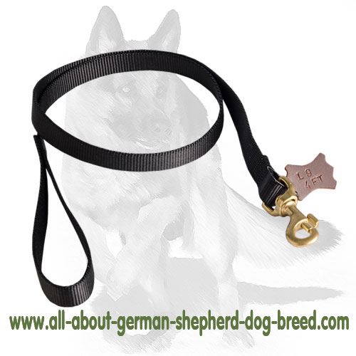 Nylon dog leash with rust-resistant hardware