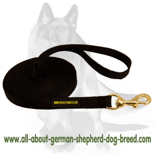 Water-resistant nylon dog leash
