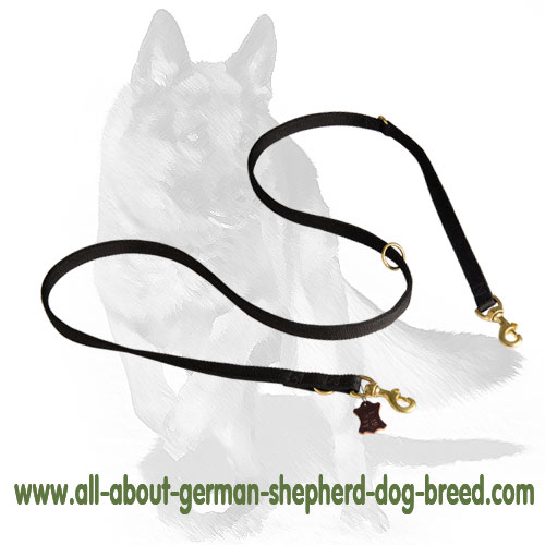 Durable nylon dog leash with brass snap hook and O-ring