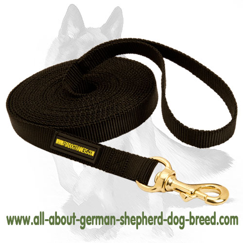 Nylon dog leash equipped with sturdy hardware