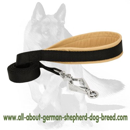 Tear-proof  dog leash made of 2-ply nylon