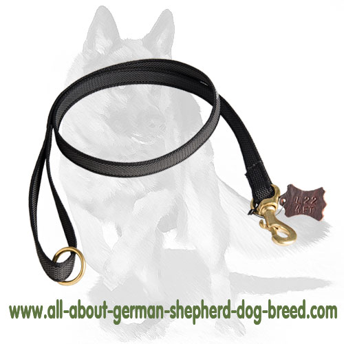 Walking nylon dog leash with sturdy hardware