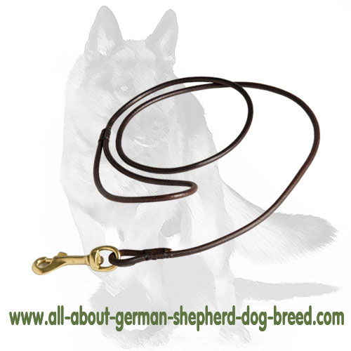 Multifunctional leather dog leash with easy in use snap hook