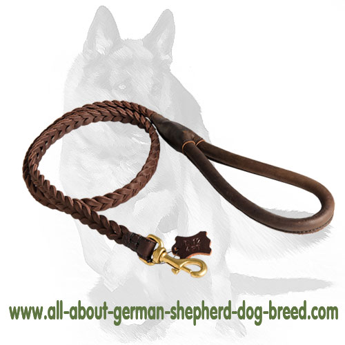 Reliable leather dog leash with brass snap hook