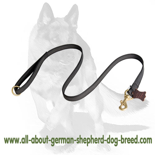 Tear-proof  nylon dog leash