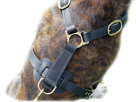 Classic Leather Harness For Big Dogs-German Shepherd harness