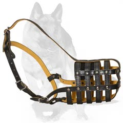 Muzzle for Royal Dog