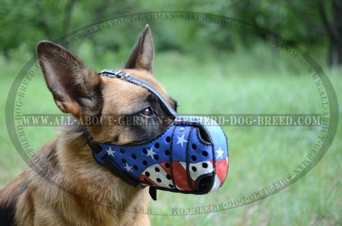 German Shepherd Leather Collar with American Flag Painting