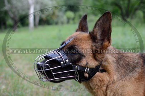 Best Ventilated Cage-like Dog Muzzle