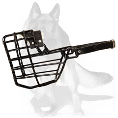 Well ventilated muzzle with black wire basket
