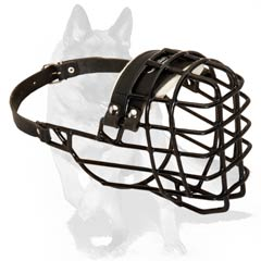 All weather muzzle with nose padding