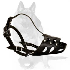 Aired leather muzzle preventing barking