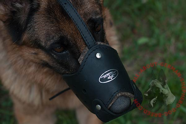 Easy adjustable leather German Shepherd muzzle