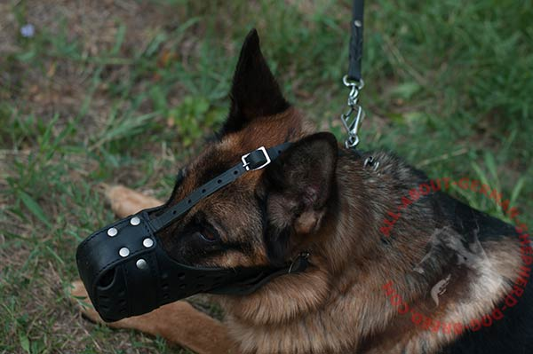 Free-breathing leather canine muzzle for German Shepherd