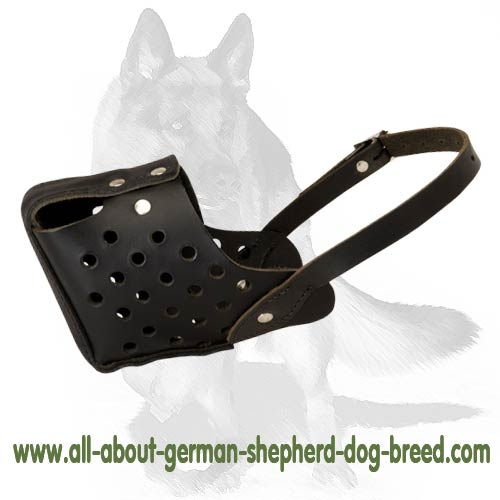 Attack/agitation training reliable leather dog muzzle