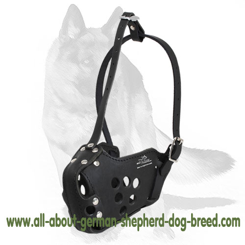 Comfy leather dog muzzle with soft padding