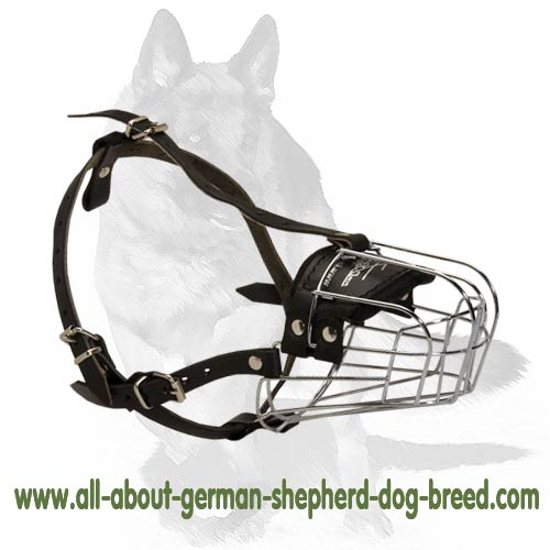 Spacious wire basket muzzle