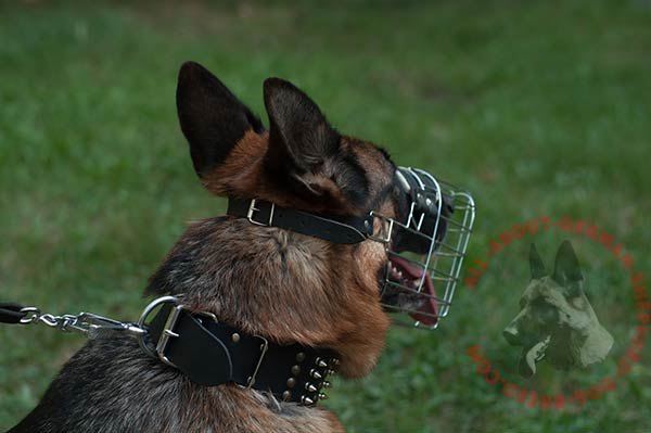 Wire basket German Shepherd muzzle with adjustable strap
