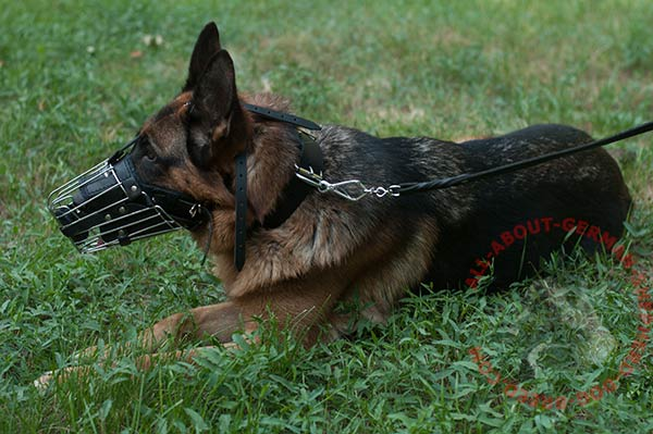 Adjustable wire basket German Shepherd muzzle
