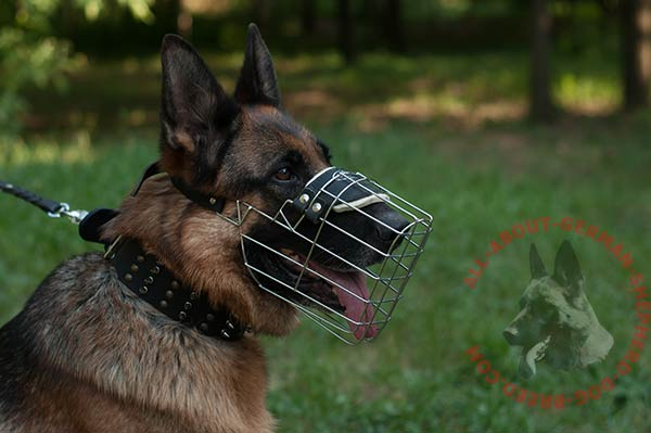 Easy-to-use wire cage German Shepherd muzzle