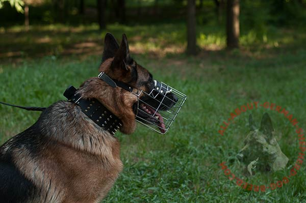 Free-breathing wire cage German Shepherd muzzle