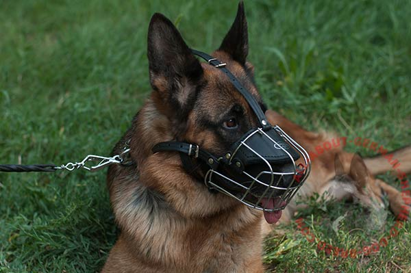 Mixed wire cage dog muzzle for German Shepherd with leather parts