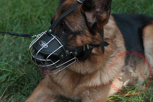 Adjustable wire cage dog muzzle for German Shepherd