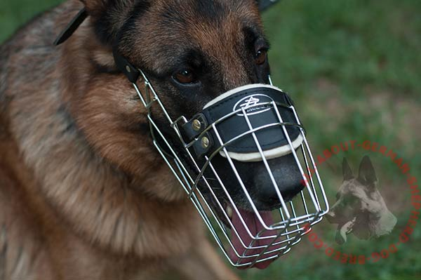 Reliable wire dog muzzle for German Shepherd with padded leather part