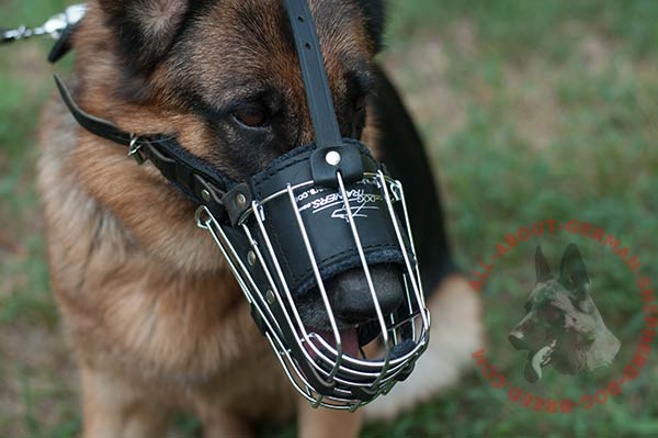 Comfortable wire dog muzzle for German Shepherd with padded leather part